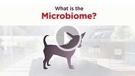 Nutrition - What is a microbiome?